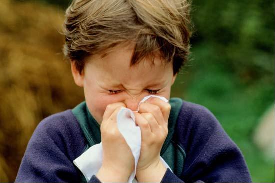 Cordone ombelicale e allergie: come capire la probabilità di allergie future del nascituro